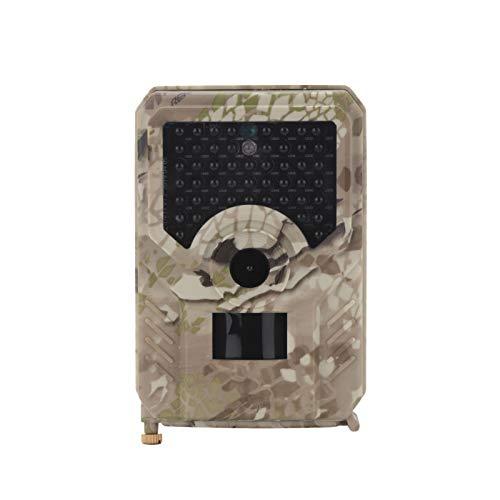 Queiting 120° Wildkamera Fotofalle 12MP 1080P IP65 Wasserdicht Fotofalle IR Nachtsicht für Jagd und Tierbeobachtung