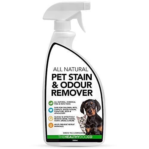 The Healthy Dog Co Natürlicher Flecken- und Geruchsentferner für Hunde und Katzen, Enzym-Teppichreiniger, tötet Keime, entfernt Erbrochenes, Urin, Kot, Speichel, Gerüche, 1 Liter
