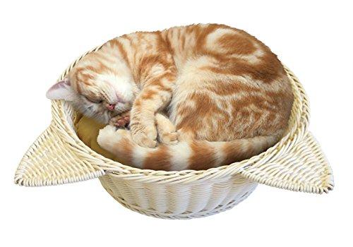 マルカン マルカン ニャン太の猫鍋 ラタン調ベッド