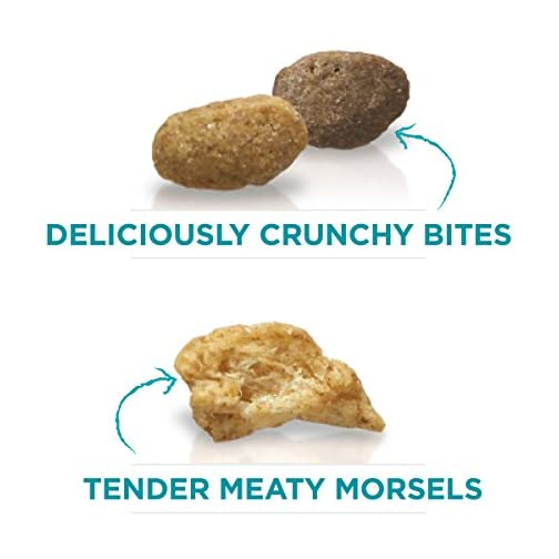 Purina ONE Tender Selects Blend Adult Dry Cat Food 5