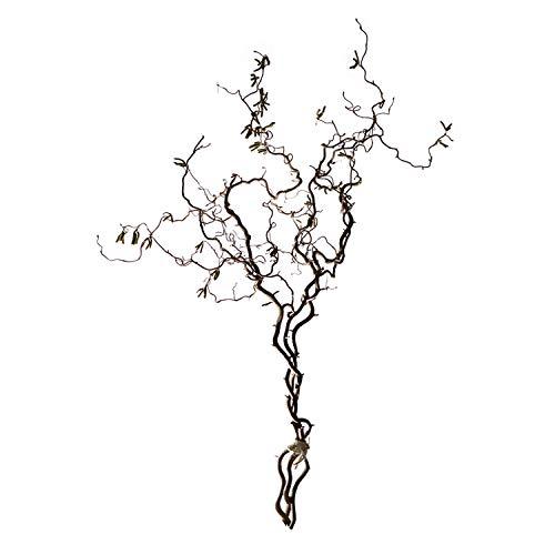 4-6 echte Korkenzieheräste im Bund (ca. 90-110 cm/Ast): Naturdeko für Bodenvasen I Deko Ast I Bodendeko Wohnzimmer I Äste und Zweige deko I Holz Äste auch für Nagetiere & Vögel