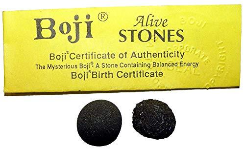 Boji lebende Steine Bojis Pop Rocks ca. 15 mm Nr. 2270 mit Echtheitszertifikat