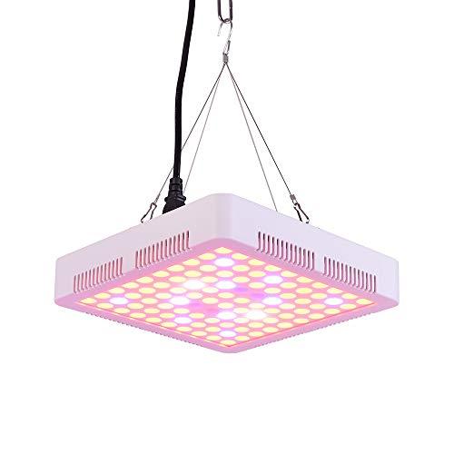 MROSW waxen LED-licht 100W lamp voor planten Full Spectrum Phyto lamp Fitolampy Indoor kruiden licht voor de kas LED kweken tentdoos