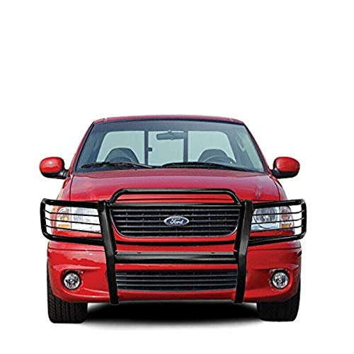 03 f150 grille guard - 7