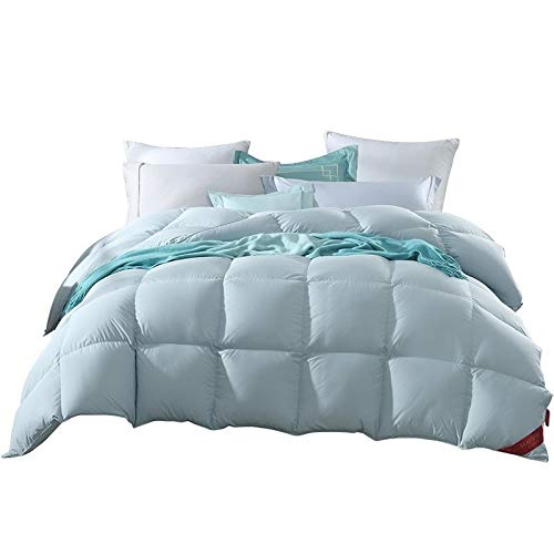 Comforter Bedding Goose Down Quilt Goose Feather Quilt Winter Winter Quilt Core Thick Warm Spring and Autumn Quilt Single Double XQ-10.24 (Size : 220240cm)
