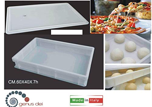 Contenitore per impasto pizza cassetta service pane panelli panetti impasti con coperchio 60x40x7h con marchio personalizzato