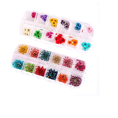 HZWLF Nail Art Tool, Dry Flower Nail Art 3D Nail Sticker Decal for Women (36Pcs Large Size Dry Flower + 36Pcs Small Size Dry Flower)
