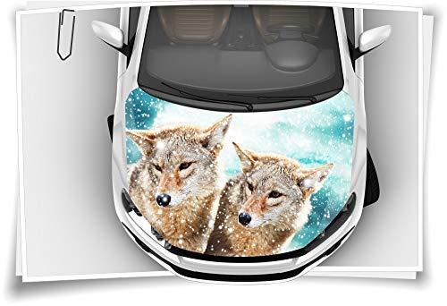 Medianlux Wolf Wölfe Tier-Welt Motorhaube Auto-Aufkleber Steinschlag-Schutz-Folie Airbrush Tuning Car-Wrapping Luftkanalfolie Digitaldruck Folierung