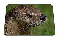 22cmx18cm マウスパッド (カワウソぬれた顔の髪) パターンカスタムの マウスパッド