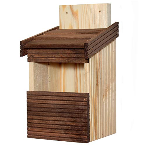 Nistkasten Vogelhaus Halbhöhle Nisthöhle Holz Natur für Bachstelze Rotkehlchen