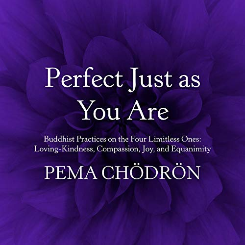 Perfect Just as You Are cover art