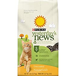 Best Non Clumping Cat Litter Review Some Cats Need This