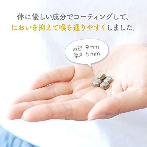 [時期別葉酸サプリプレミン]ゲンナイ製薬プレミン16w31日分/124粒入り(16週出産前向け)葉酸サプリメント葉酸タブレット