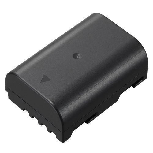 Panasonic DMW-BLF19 Lithium-Ion Battery Pack (Black)