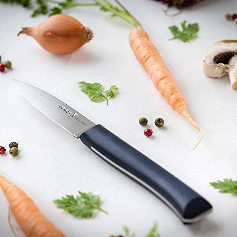 Opinel Intempora Paring Knife 002223