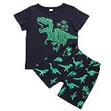OWildeL Dinosaurier drucken Set Baby Hose Sport Set Mädchen T-Shirt & Kurze 2 Stücke Mädchen KleidungBekleidungsset(140,Grün)