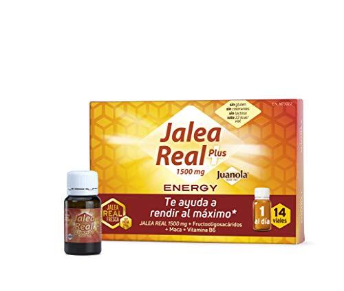 JUANOLA Jalea Energy, Complemento alimenticio con jalea real fresca, 14 Viales