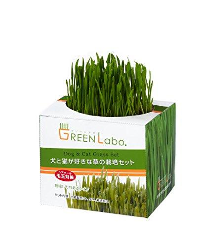 グリーンラボ『犬と猫が好きな草の栽培用セット×4個セット』