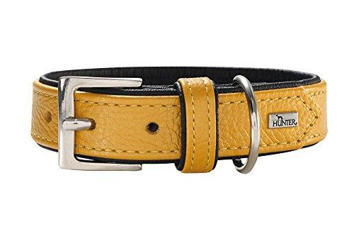 HUNTER CAPRI hondenhalsband, met hoogwaardig nappaleder, zacht en soepel, 50 (S-M), metallic geel