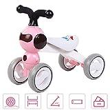 FLy Bici Sin Pedales Niño Baby Balance Bicicleta Bebes Correpasillos Juguetes Andador Bicicleta Sin Pedales De 1 A 3 Años De Regalo Favorito del Niño,Rosado