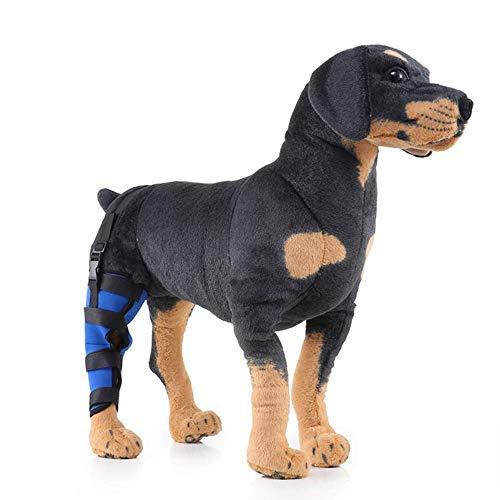 Postoperative Gehhilfe Für Hunde, Pet Leg Protector, Postoperative Gehhilfe Für Hunde, Reha-Knieschutz Für Hunde,Right,L