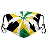 Comfortable Printed mask, Jamaica Happy Day,Windproof Facial decorations for man and woman