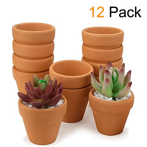 Set of 12 Terracotta Clay Pots - Great for Succulent & Cactus Nursery Planter, DIY Craft Projects, Wedding and Party Favors 4inchx 4inch