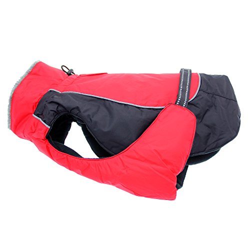 Alpine All-Weather Dog Coat - Red & Black (M...
