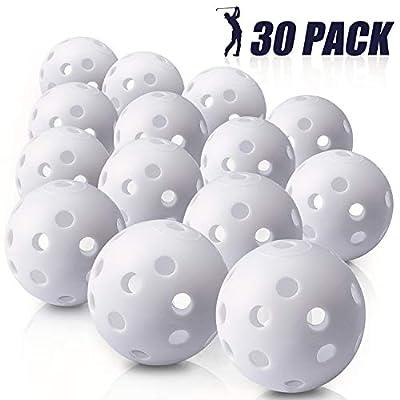 Biilaflor 30 Pack Polyurethane