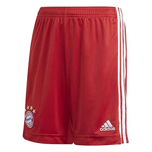 adidas Pantalones Cortos Unisex para niños 20/21 FC Bayern, Unisex niños, Corto, FI6203, Fcbtru, 140