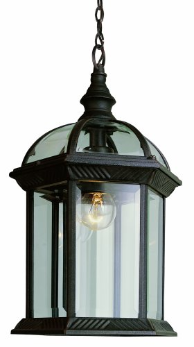 Trans Globe Lighting 4183 RT Outdoor Wentworth 17.5