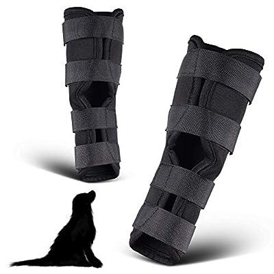 PamperPets Bandage für Hunde, für Vorder- und Hinterbeine, 2 Stück, Größe L