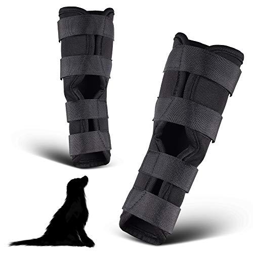 PamperPets Bandage für Hunde, für Vorder- und Hinterbeine, 2 Stück, Größe M
