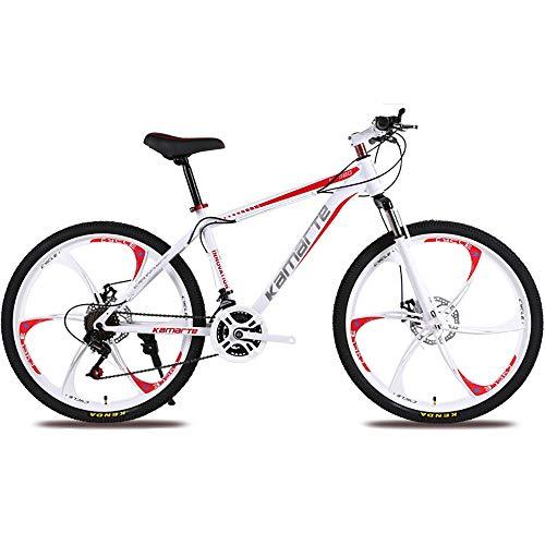 Link Co Bicicleta de montaña Frenos de Disco Coche de Regalo 24...