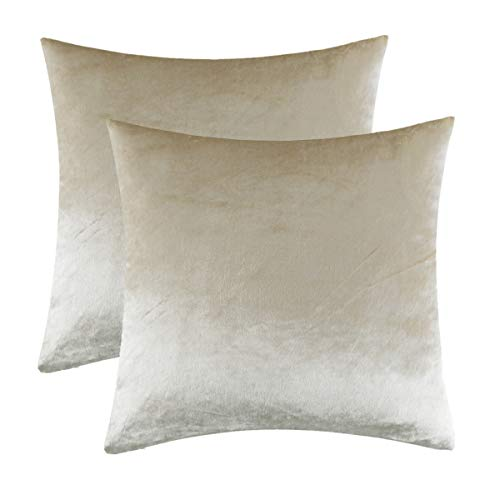 GIGIZAZA Kissenbezug 40x40 cm Kissenbezüge Creme Samt Kissenhülle Zierkissenbezug Dekokissen für Sofa Schlafzimmer Wohnzimmer 2er Set