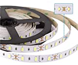 Led Atomant Rollo de 5 Metros de Tira 12w/m A 24V. Color Blanco Calido 3000K. 4800 Lumenes. Strip LED, 12 W