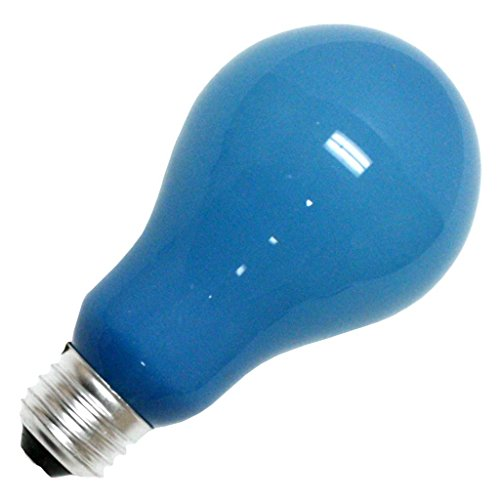 Eiko 50 - BCA - Photography Lighting - A21 - Blue Frosted - Photoflood - 250 Watts - 120 Volt - E26 Base - 4800K