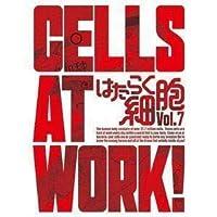 はたらく細胞 7完全生産限定版 花澤香菜