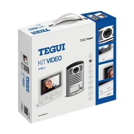 Kit Videoportero superficie2 hilos Tegui Linea 2000 con monitor CLASSE100V16B Basico379011