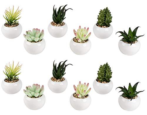 Mini Potted Succulents - 12-Pack Miniatuur Faux Vetplanten in Ronde Keramische Planter Pot, Groene Kunstmatige Tafelblad Decoratie, Decoratieve Indoor Home, Kantoor, Badkamer Kleine Planten Decor