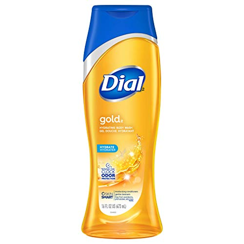 Dial Body Wash, Gold with All Day Freshness, 16 Fluid Ounces (Pack of 6)