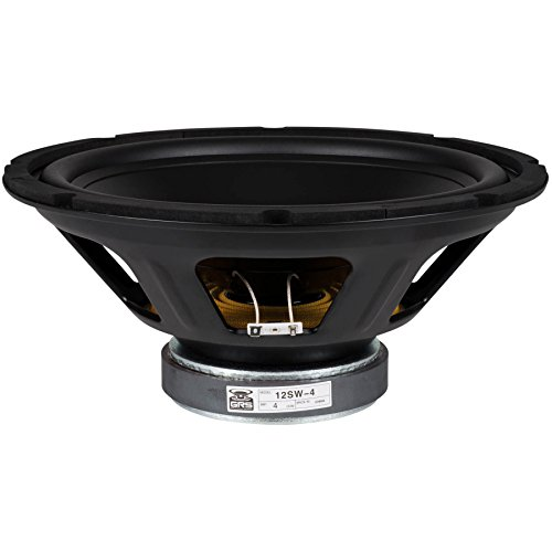 12 inch speaker cone - 5