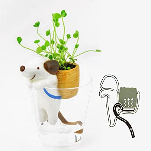 Macetas Suculentas De Cerámica para Perros Pequeños con Mochila, Mini Macetas Transparentes para Plantas, Maceta Pequeña De Porcelana, Decoración Moderna para El Hogar Y La Oficina