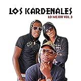 Lo Mejor de Los Kardenales Vol.3