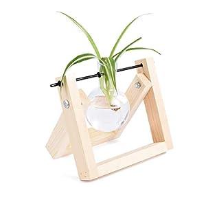 KnikGlass Florero Soporte de Madera, Florero Transparente para Plantas Marco de Madera hidropónico Creativo Decoración…
