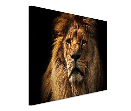 Bestforhome GmbH Modernes Bild 120x80cm Tierfotografie – Großer ausgewachsener Löwe im Porträt