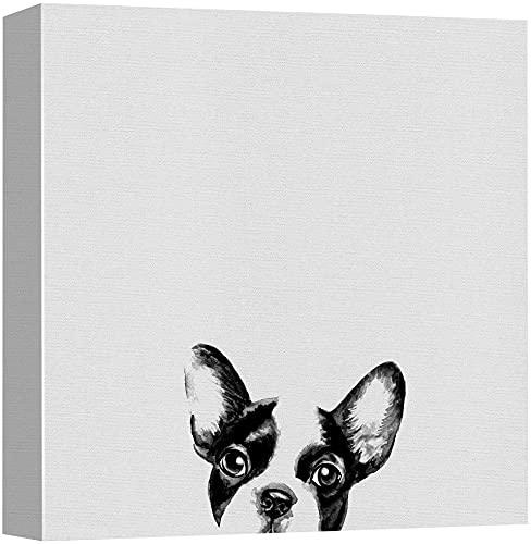 NWT Canvas Print Wall Art Friendly French Bulldog Portrait Animals Wildlife Photography Modern Art Decorative Elements Closeup Relax/Calm Black and White for Living Room, Bedroom, Office - 16'x16'