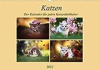 Katzen - Der Kalender fuer jeden Katzenliebhaber (Wandkalender 2022 DIN A2 quer): Bestueckt mit hochwertigen Fotos, kleiner und grosser Briten (Monatskalender, 14 Seiten )