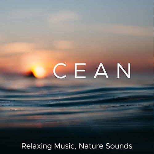 Relaxing Piano Music & Asian Zen Spa Music Meditation
