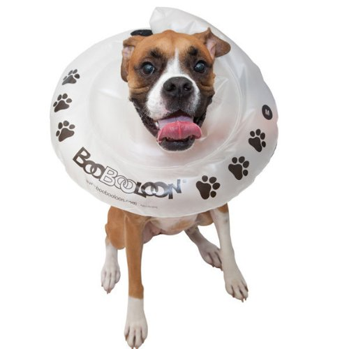 BooBooLoon Inflatable Recovery Collar